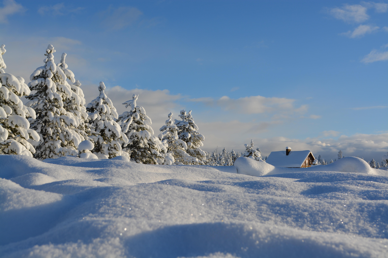 【高品質】冬の動画素材サイトまとめ|雪景色やイルミネーションなど